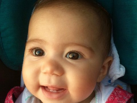 Dientes de bebé o dientes de leche. Dentista para niños en Acapulco. Odontopediatría Acapulco